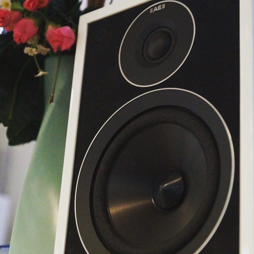 Acoustic Energy 301
