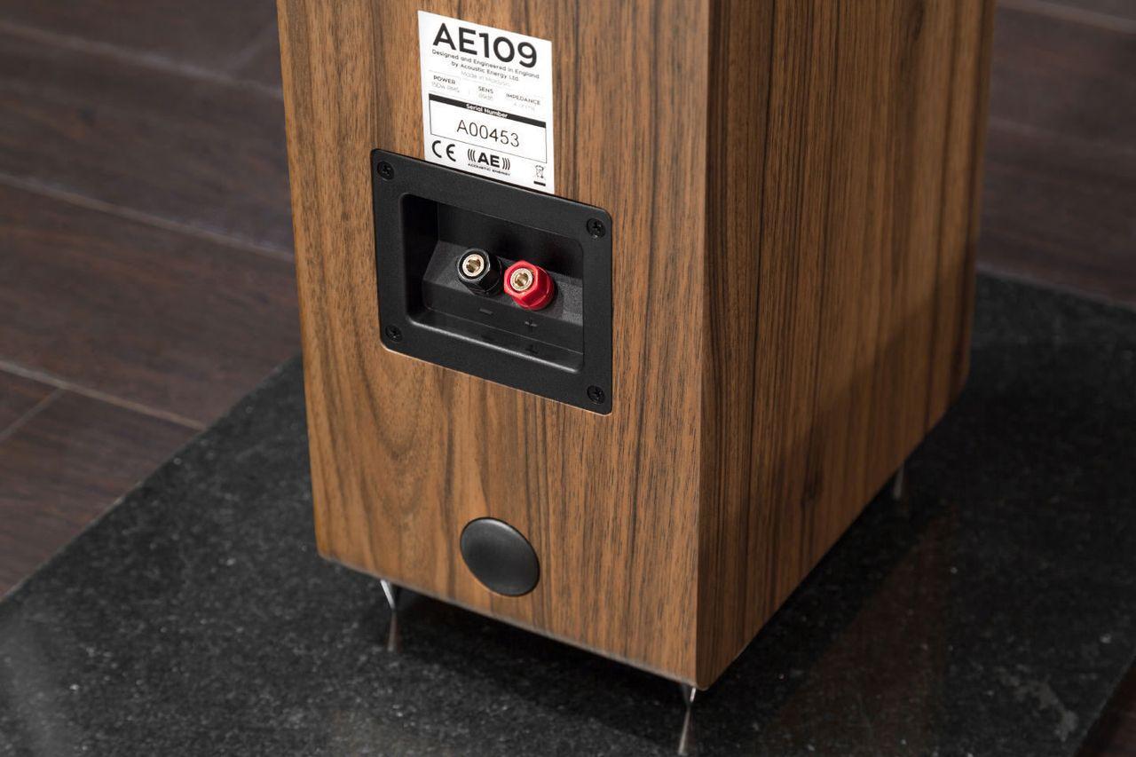 У АЕ109 только одна пара клемм, поэтому выбирайте усилитель особенно тщательно